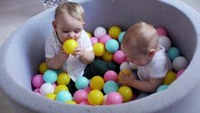Peu amusement de garçon à jouer avec les boules en plastique dans la piscine Son ami goûte la boule clips vidéos