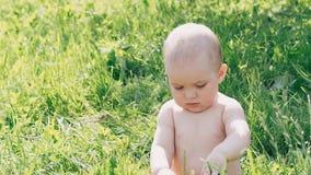 Peu bébé garçon s'asseyant dans le pré dans l'herbe verte et le jeu banque de vidéos