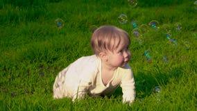Peu bébé sur l'herbe banque de vidéos