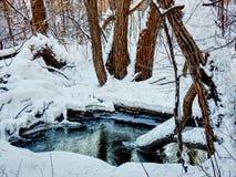 Peu d'étang dans les bois couverts des photos de HDR de neige Image stock