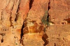 Peu d'arbre s'élevant sur des falaises de sable du sable de couleur orange images stock