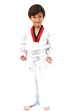 Peu d'art martial de garçon du Taekwondo Photo libre de droits