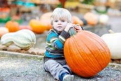 Peu d'enfant s'asseyant avec un bon nombre de potirons sur la ferme de correction Photographie stock libre de droits