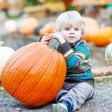 Peu d'enfant s'asseyant avec un bon nombre de potirons sur la ferme de correction Photographie stock