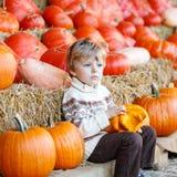 Peu d'enfant s'asseyant avec un bon nombre de potirons sur la ferme de correction Photo libre de droits