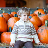 Peu d'enfant s'asseyant avec un bon nombre de potirons sur la ferme de correction Images libres de droits