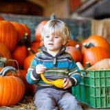 Peu d'enfant s'asseyant avec un bon nombre de potirons sur la ferme de correction Photos stock