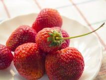 Peu de baies d'une fraise fraîche d'un plat blanc Images stock