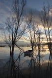Peu de bateau et arbres Photo libre de droits