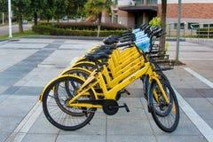 Peu de bicyclettes pour le loyer à l'intérieur de l'université Photographie stock libre de droits