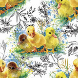 Peu de canetons, poulets et lièvres mignons pelucheux d'aquarelle avec le modèle sans couture d'oeufs sur le fond blanc dirigent  Image stock