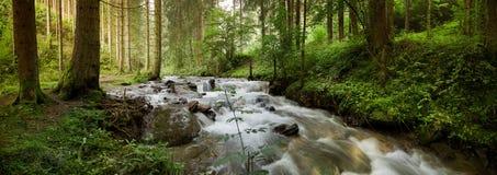 Peu de cascade à écriture ligne par ligne dans la forêt image stock