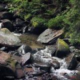 Peu de cascade dans les montagnes photos libres de droits