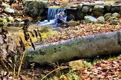 Peu de cascade de région boisée en automne photo stock