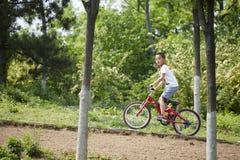 Peu de cavalier de vélo de montagne photo libre de droits