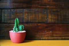Peu de fond en bois de cactus avec l'espace pour le texte Photo libre de droits