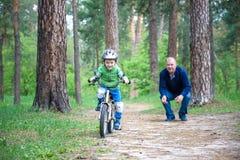 Peu de garçon d'enfant de 3 ans et son père dans la forêt d'automne avec a Image stock