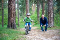 Peu de garçon d'enfant de 3 ans et son père dans la forêt d'automne avec a Images libres de droits