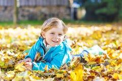 Peu de garçon d'enfant avec les feuilles d'automne jaunes en parc photo libre de droits