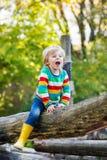 Peu de garçon d'enfant ayant l'amusement sur le terrain de jeu d'automne Images libres de droits