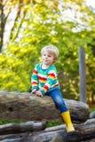 Peu de garçon d'enfant ayant l'amusement sur le terrain de jeu d'automne Photo stock