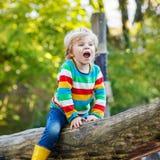 Peu de garçon d'enfant ayant l'amusement sur le terrain de jeu d'automne Images stock