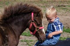 Peu de garçon de ferme avec le poney Photo stock