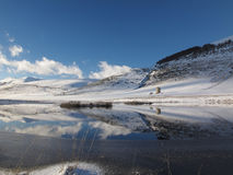 Peu de lac Images libres de droits