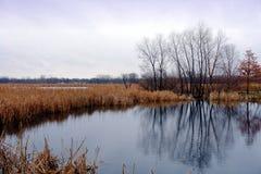 Peu de lac april Photographie stock libre de droits