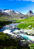 Peu de lac dans les montagnes sur le pré vert Image stock