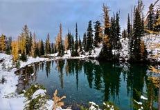 Peu de lac et arbres jaunes se sont reflétés dans l'eau calme Photo libre de droits