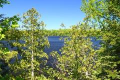 Peu de lac Horsehead - le Wisconsin photo stock
