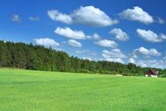 Peu de maison dans le domaine d'herbe Photo stock