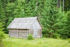 Peu de maison dans les bois Image stock