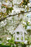 Peu de maison en bois au printemps avec la cerise de fleur Photos libres de droits