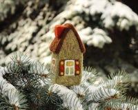 Peu de maison sur l'arbre de sapin photographie stock