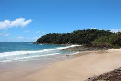 Peu de plage de vague et de sable Image stock