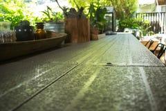 Peu de plante verte décorée sur la table en métal Photo stock