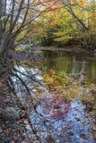 Peu de réflexions d'automnes de rivière Photo stock