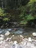 Peu de rivière dedans Photos libres de droits