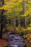 Peu de ruisseau avec des couleurs d'automne image libre de droits