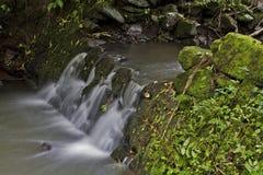 Peu de ruisseau de ondulation Image libre de droits