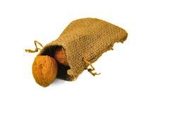 Peu de sac des noix Photographie stock libre de droits