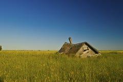 Peu de toit sur la prairie Images libres de droits
