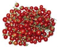 Peu de tomates-cerises rouges d'isolement Images libres de droits