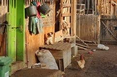 Peu de yard de village Photo libre de droits