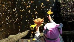 Peu fille avec le chapeau jeter les feuilles colorées vives en eau de rivière Enfant sur le pont banque de vidéos