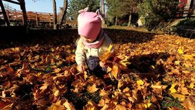 Peu fille mignonne rassemble les feuilles d'automne colorées tombées dans le bouquet en parc clips vidéos