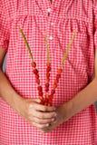 Peu fille tenant les fraisiers communs organiques sur la paille images libres de droits