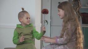 Peu garçon dans des pyjamas verts donne la fleur à sa soeur Lien de parenté banque de vidéos